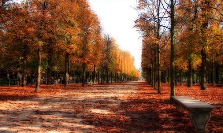 Autumn Getaways in Europe